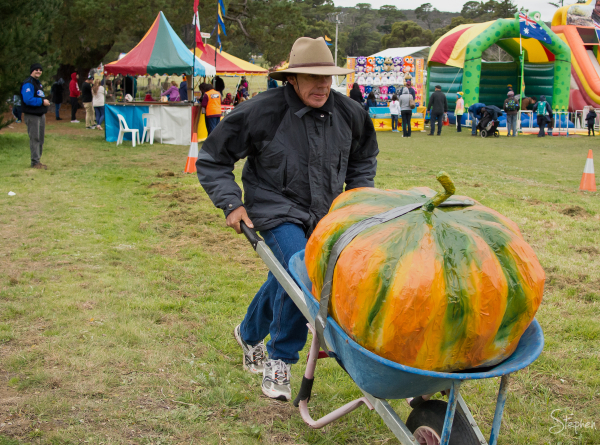 Time trial event at Collector Pumpkin Festival