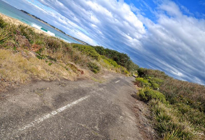 Old highway reclaimed by nature at Bermagui