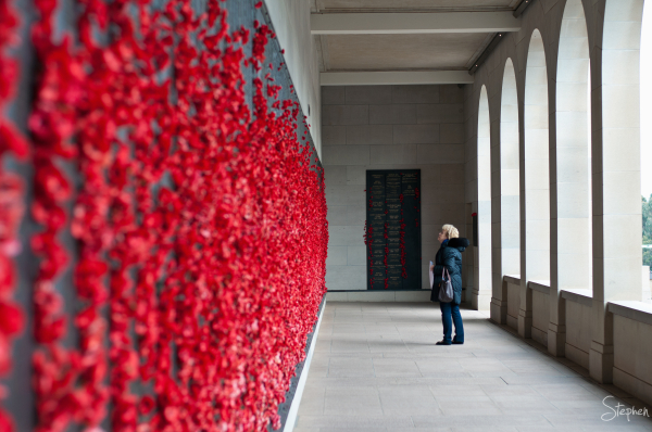 Roll of Honour poppies Australian War Memorial