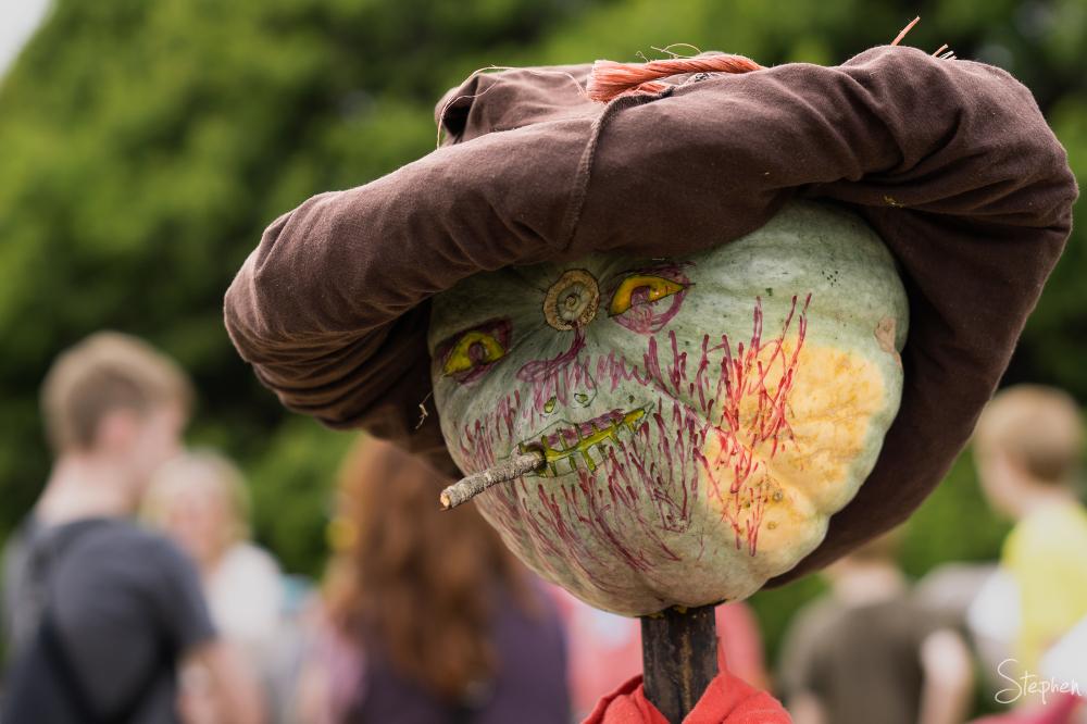 Collector Pumpkin Festival - part 1