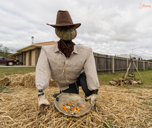 Pumpkin scarecrow at Collector Pumpkin Festival