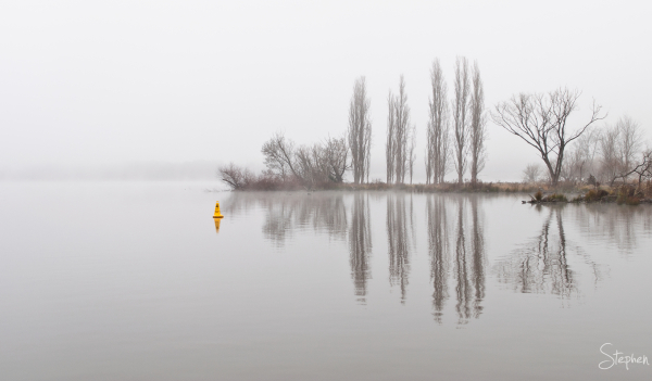 Fog filled morning at Jerrabomberra Wetlands
