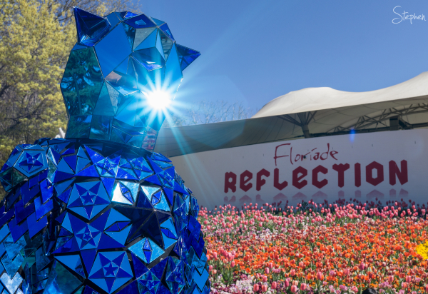 Blue Dwarf roving character at Floriade festival