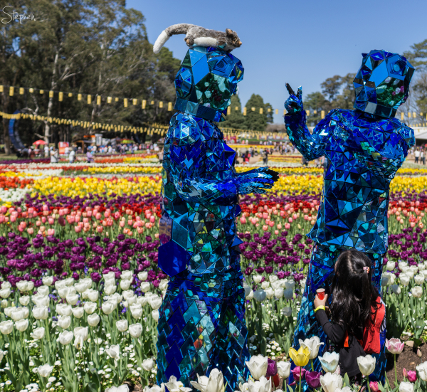 Blue Dwarf roving characters at Floriade festival
