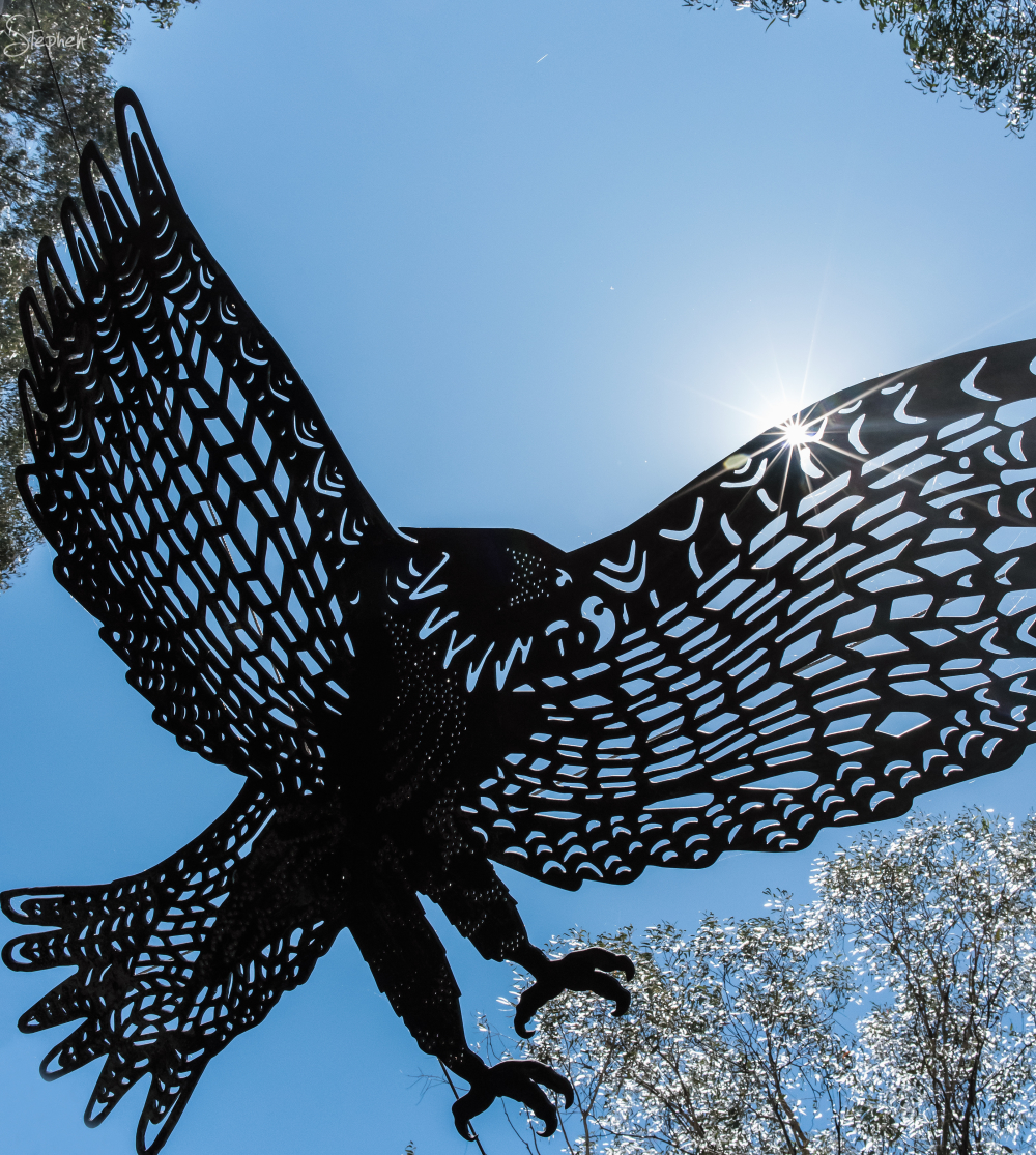 Eagle sculpture in the Sanctuary at Tidbinbilla