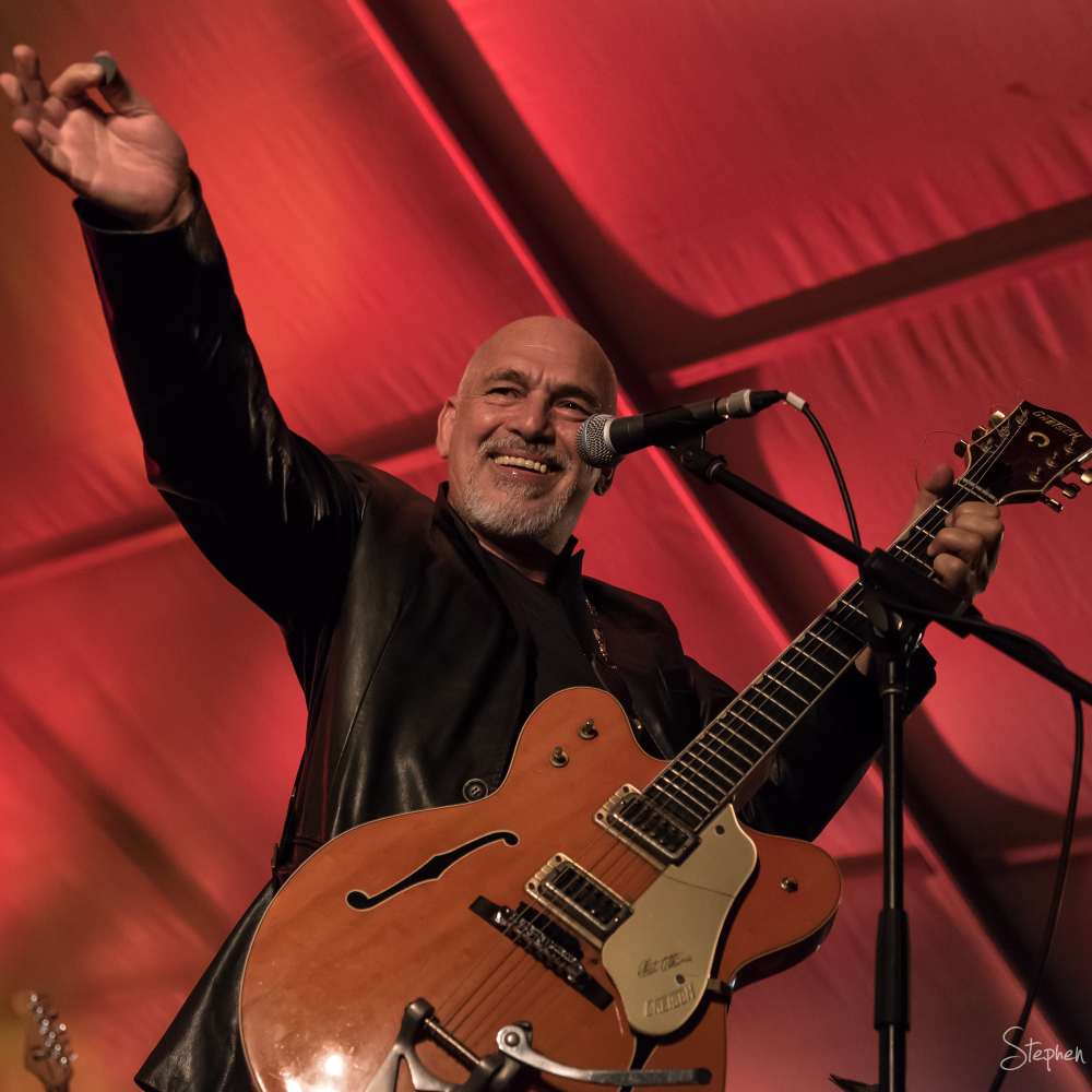 Black Sorrows at National Multicultural Festival