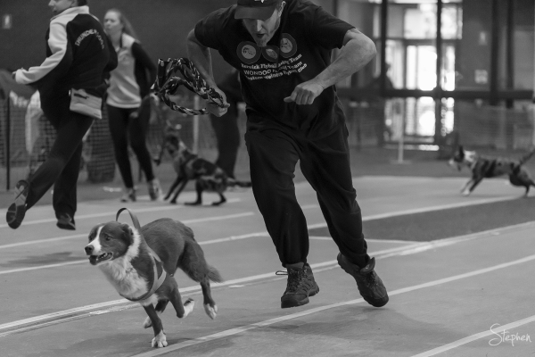 ACT Flyball competition