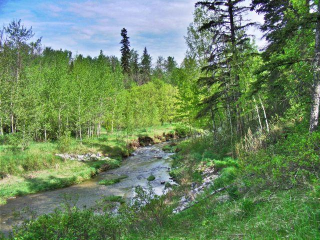victoria day creek