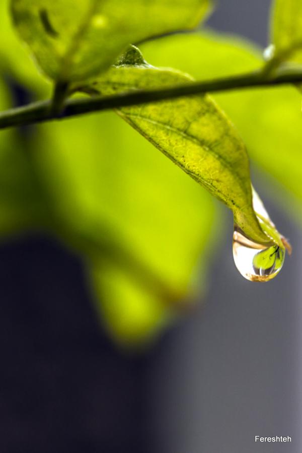 Fall & Rain  ,lllll