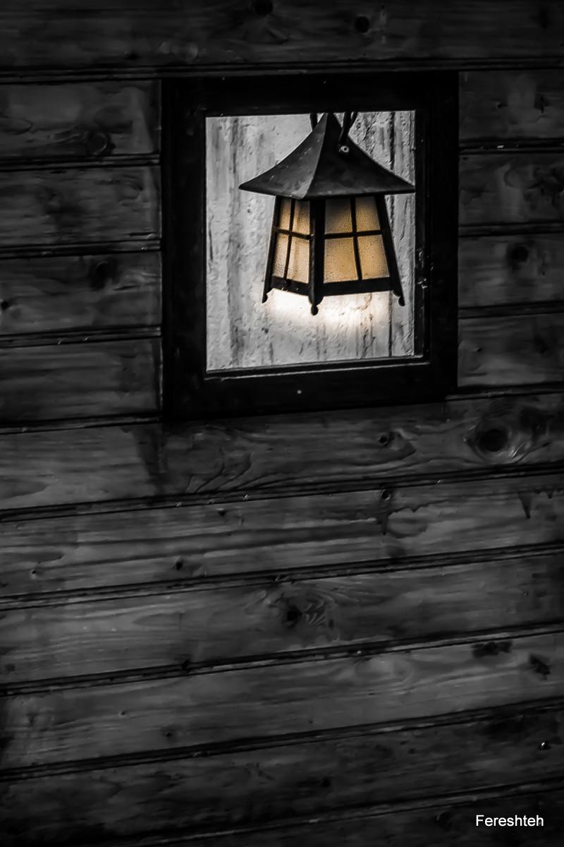 Light & Life
