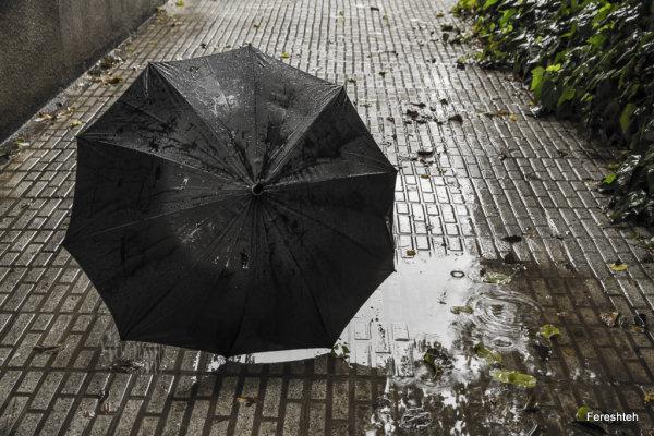 Autumn & Rain llll