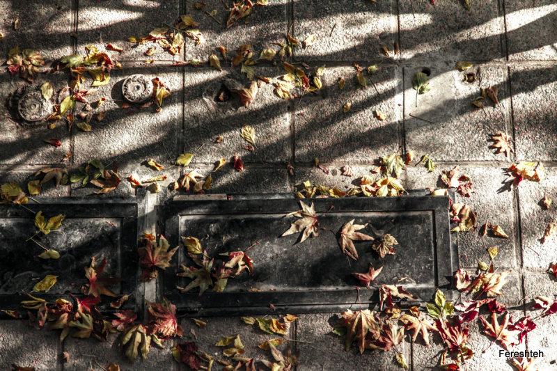 Goodbye: Autumn