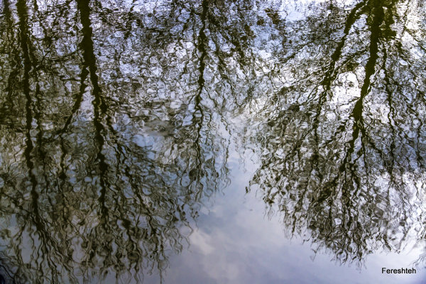 Reflections  lll