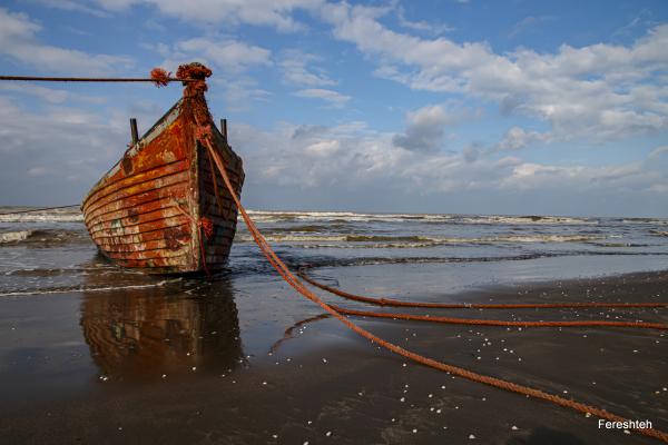 Noah's ship
