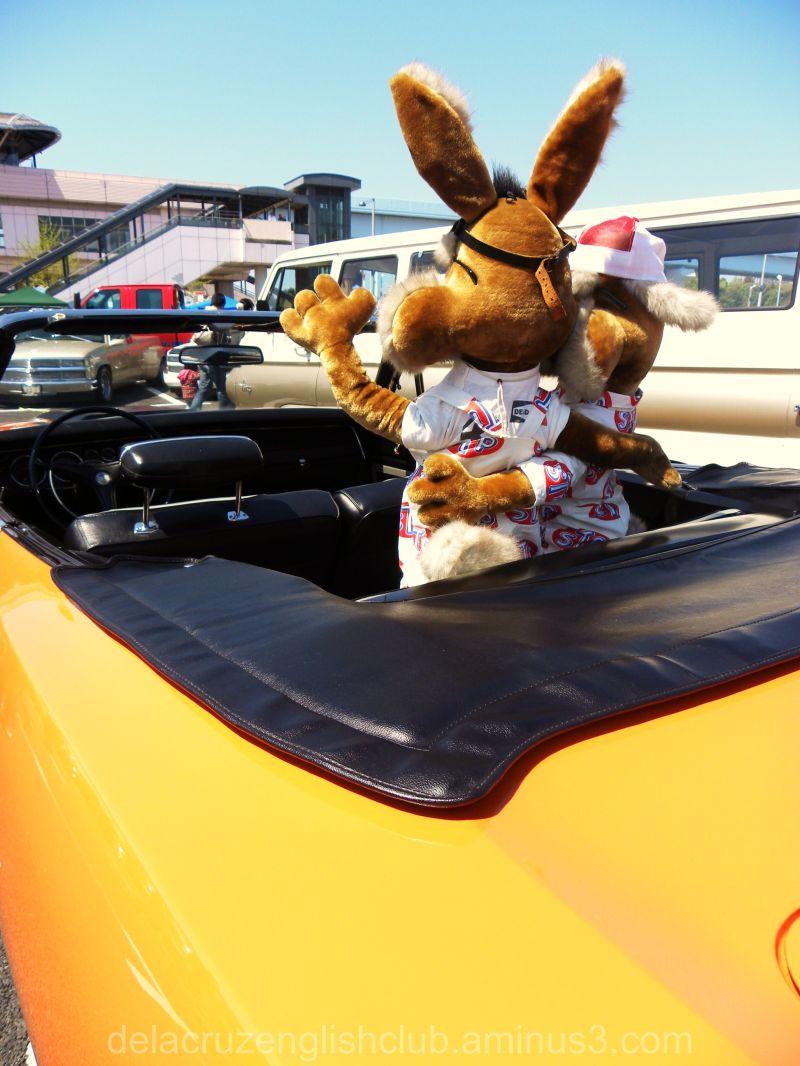Best Buddies, Car Show, Display Characters, Mascot