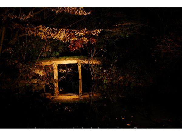 Rikugien Gardens, wooden bridge, Hon-Komagome