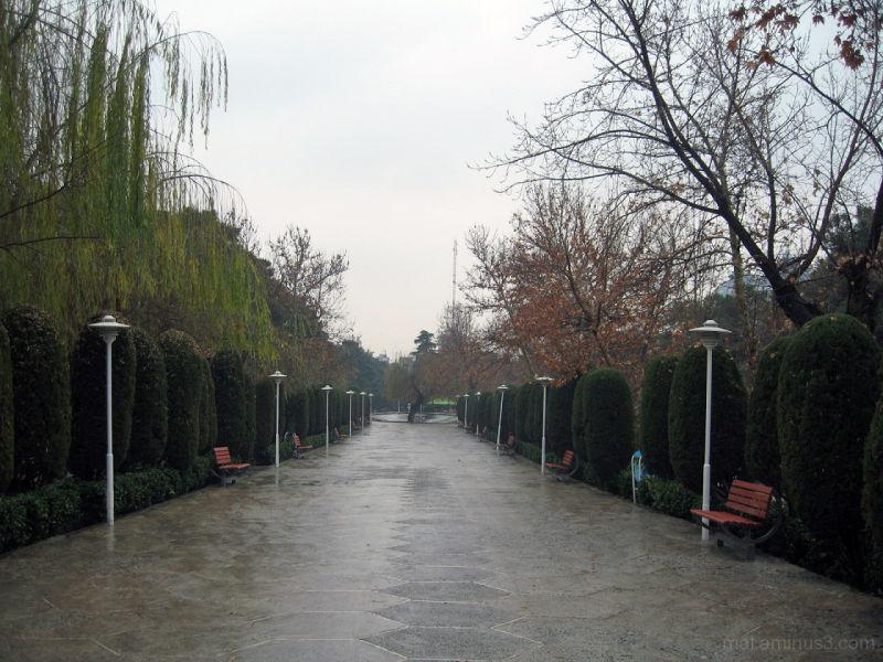 A Park in Tehran