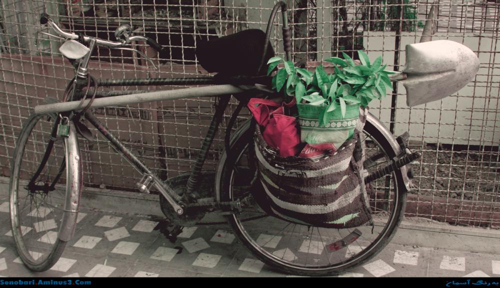 دوچرخه بهار