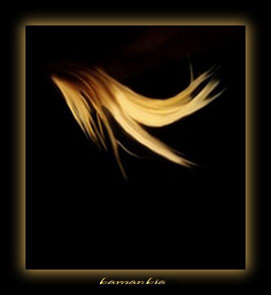 Hair-Beautiful hair-Wind & Hair