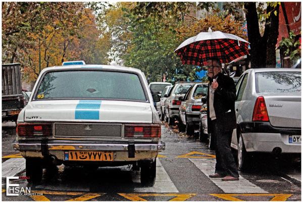 raini day