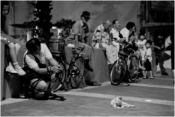 Malaccans waiting for the Wesak Parade at roadside