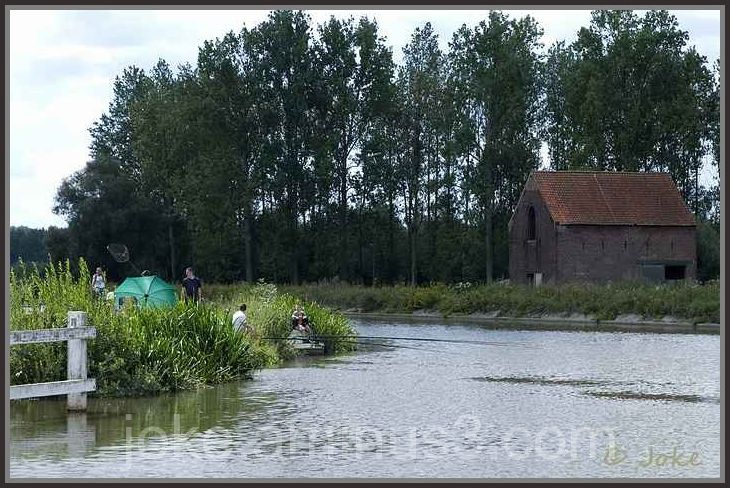 Fishing in the Dender