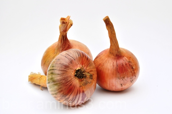 The Amazing French Onions