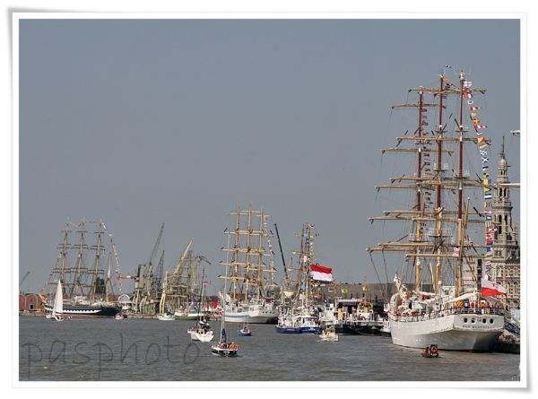 tall ships races , Antwerp,
