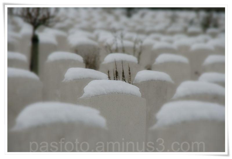 snow , Tyne cot, grave  cimetary