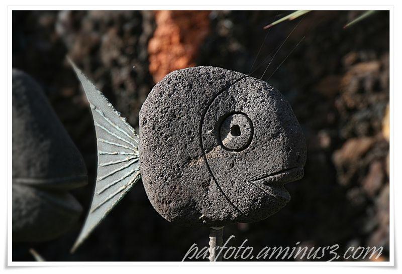 La Palma ,  Wim del Arte fish stone art