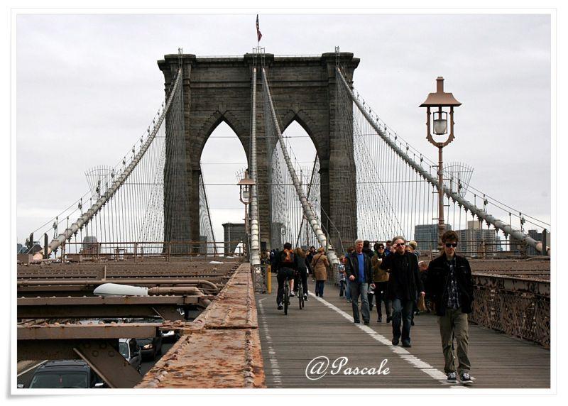 brooklyn bridge , NY