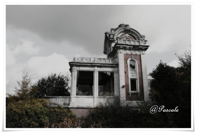 abandonned hippodrome , groenendaal