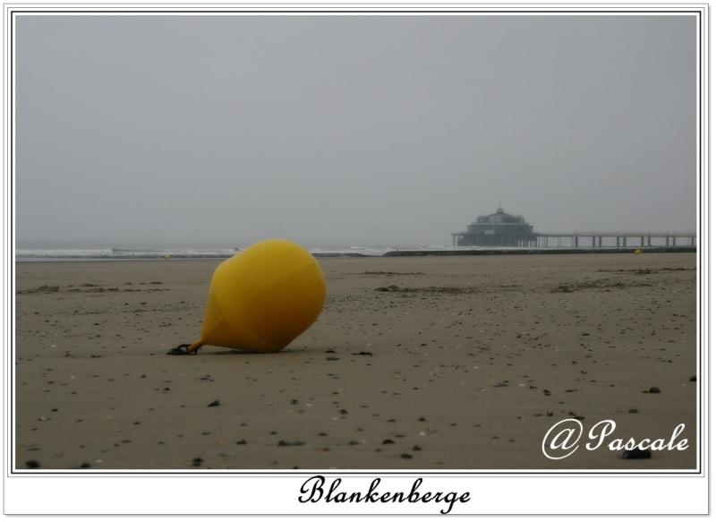 beach, blankenberge, belgium, mist , morning