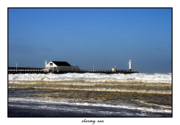 sea , beach , storm