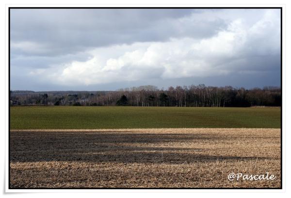 Lasne, Walloon Brabant , Belgium