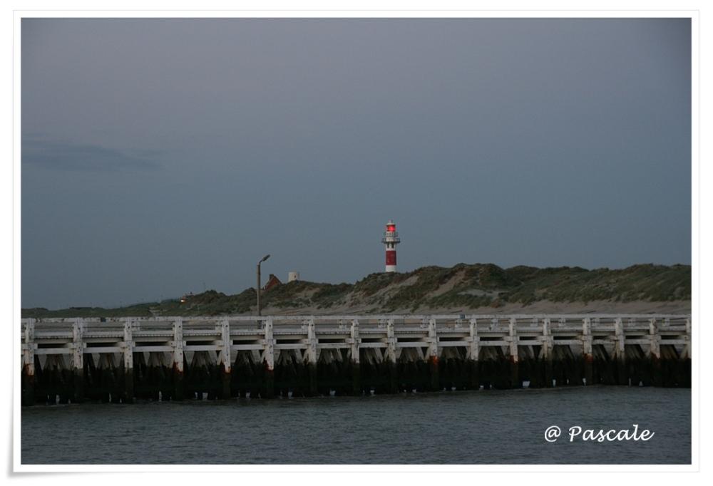 nieuwpoort , kust , zee,