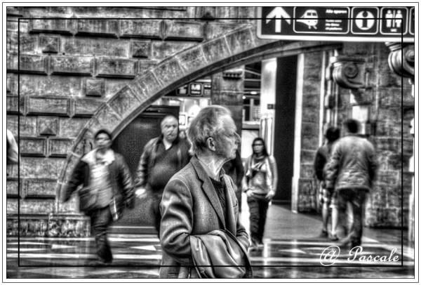 antwerp , central station