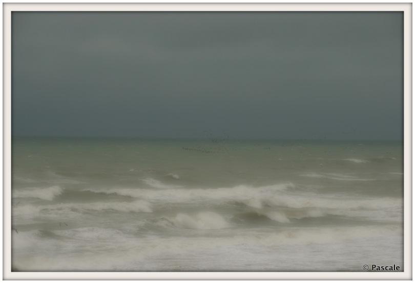 sea , France , côte d
