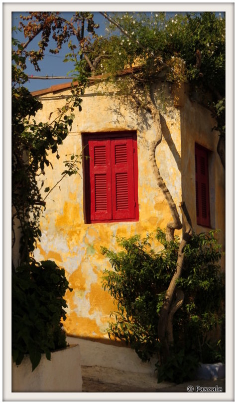 the red shutter