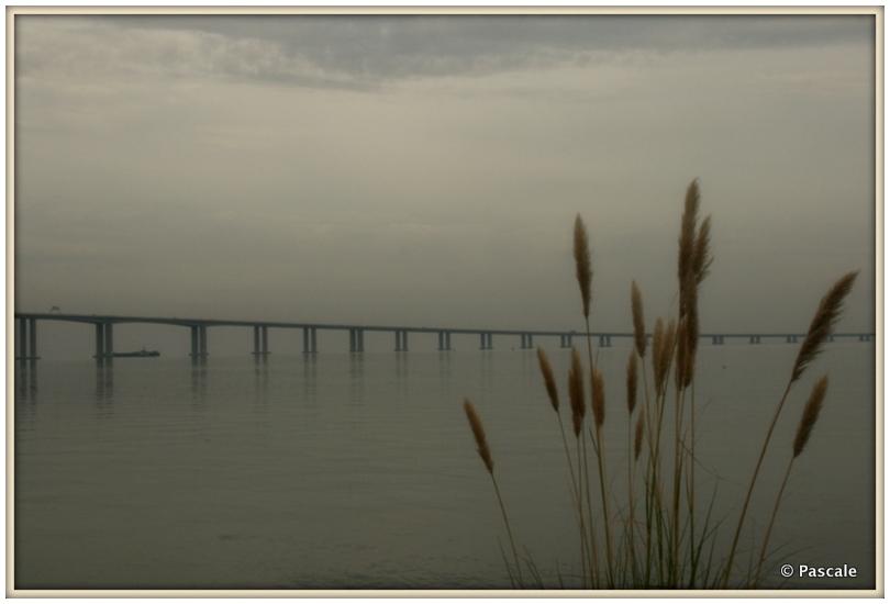 take me to the bridge