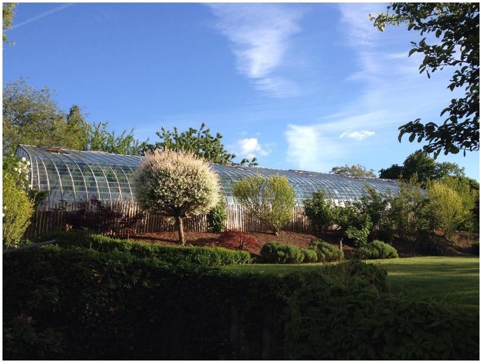 my garden view