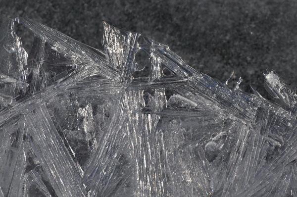 dentelle de glace