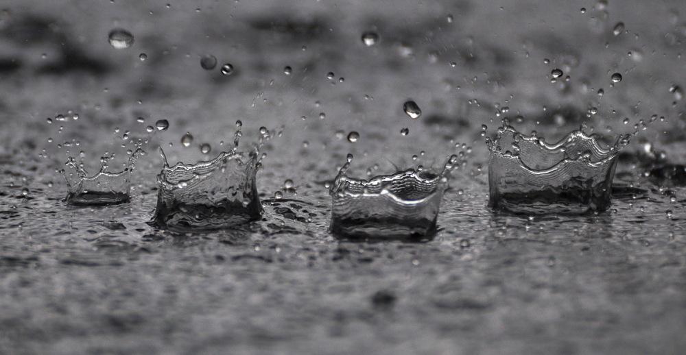 Reines de la pluie