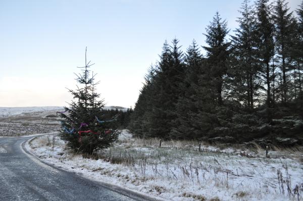 Proper Christmas Tree