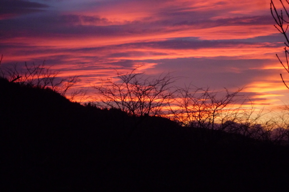 Sunset on valentine's day