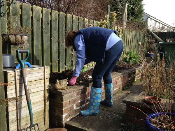 My idea of gardening