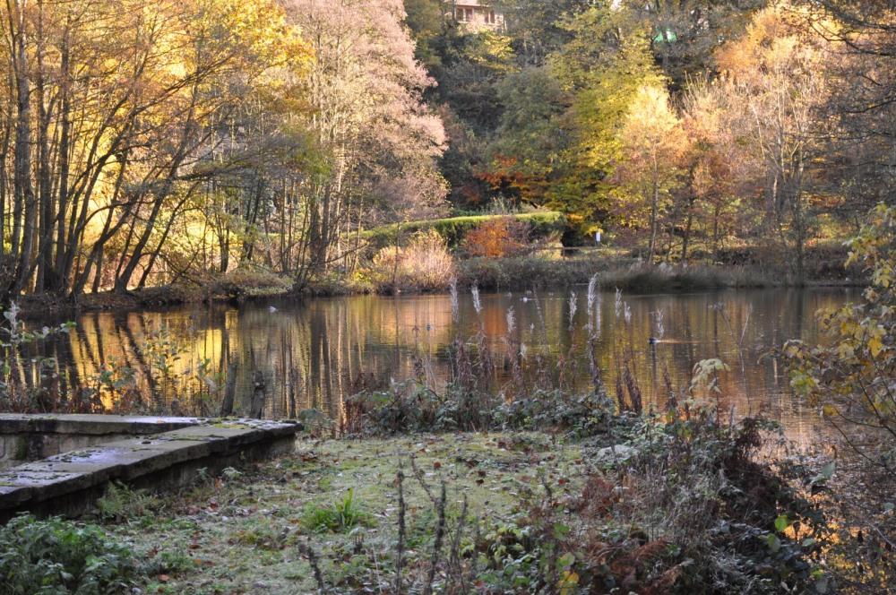 Mill Pond, New Mill
