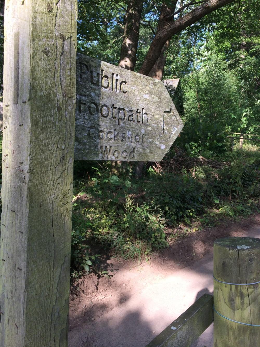 Cockshot Wood