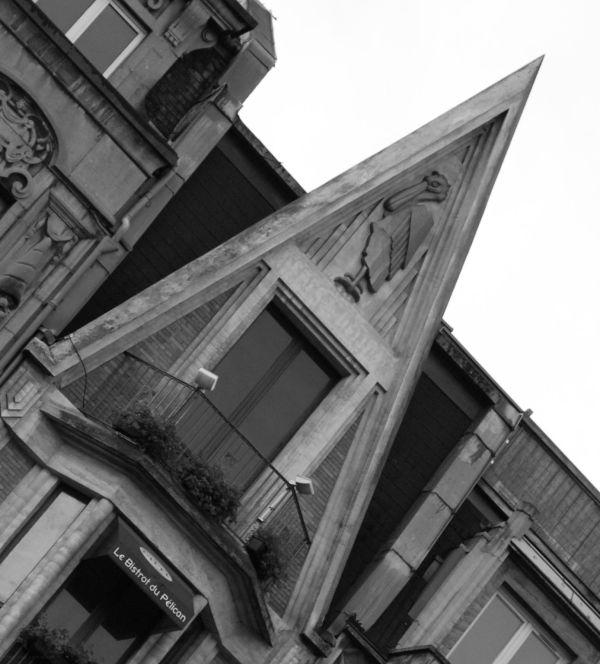 Pélican de Lille