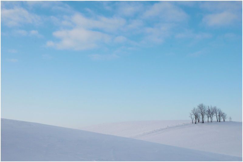 Winter landscape seasons